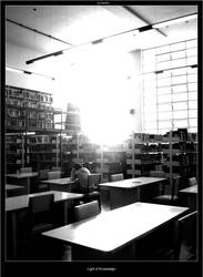 Light of Knowledge by luizalves