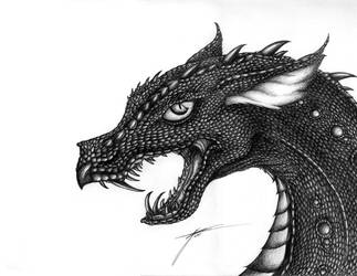 Black Scaled Dragon by Draconic-Goth