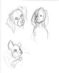 Sketches 1 by HorsesFunn