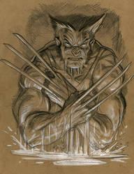 Wolverine.2 by Steve-Ellis