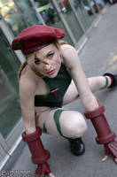 SF 2013 Cammy - A by DISC-Photography