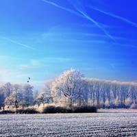 Le Pays des merveilles D Hiver by stijn