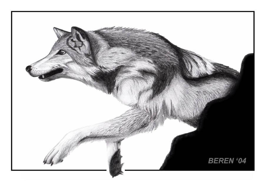 Hunting by Berenfox