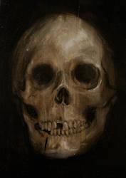 Skull - Still Life by NaomiFuller