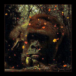 My Fascination BY Rickbw1 by DigitalArtNetwork