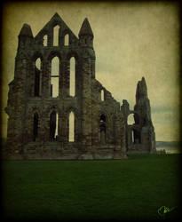 Whitby Abbey by liverecs