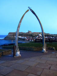 Whitby through the whale bones by liverecs