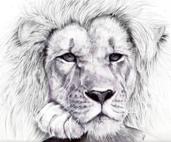 Lion BIC pen by HaitiKage