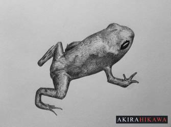 Inktober 2015: #5 by AkiraHikawa