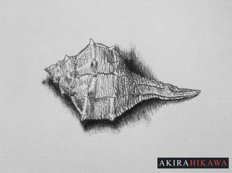 Inktober 2015: #4 by AkiraHikawa