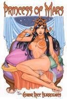 A Princess of Mars Book Cover by Tarzman