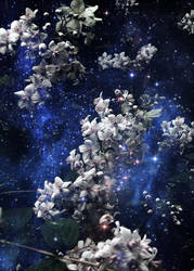 Space Flowers by spoof-or-not-spoof