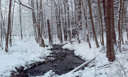 Fresh Snow by xmas-kitty