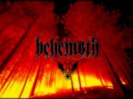 Behemoth Wallpaper by LordBezalel