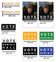 Dominic Hall 2010 Campaign by mapgie