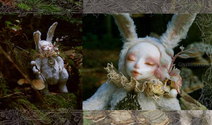 White Rabbit by tanuki-chan