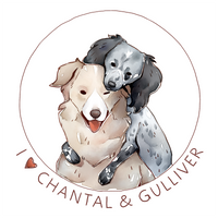[+VIDEO] Chantal and Gulliver - Commission by Singarl