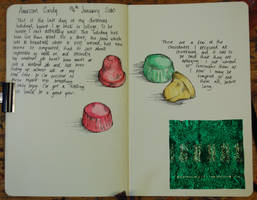 Journal 06 by glass-candy