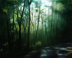Forest, Too by NikSebastian