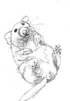 Cute Rat by NikSebastian