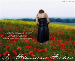 In Flanders Fields by miss-mastermind
