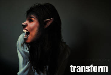 Transform 2 by something-wild