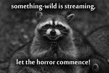 streaming by something-wild