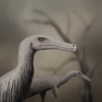 Austroraptor by PLASTOSPLEEN
