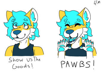 PAWBS by HyperHair