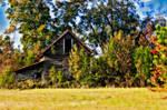 Carolina Barn 2011 by randalay