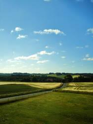 Fields by Mos-Lizzy
