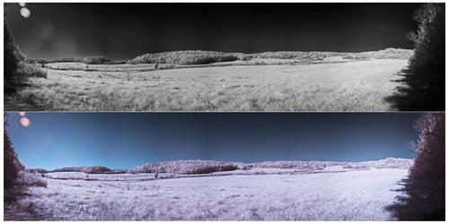 InfraRed Panoramic Shot by MeltingLiquid