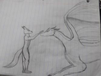 wolf and dragon by TheLastRedDragon