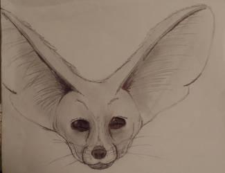 AMAZING FENNEC FOXEH by TheLastRedDragon