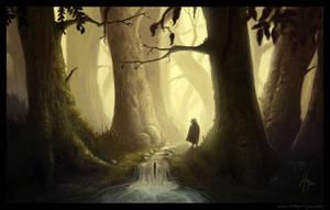 Entering the Dark Forest by YngveMartinussen