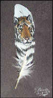 Tiger Feather by JenTheThirdGal