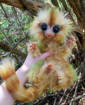 Fairy Marmoset - Poseable Fantasy Art Doll by RikerCreatures