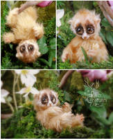 Lola the Slow Lorris - Poseable Art Doll by RikerCreatures