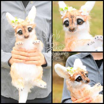 Angel Fantasy Kangaroo by RikerCreatures
