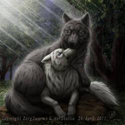 Wolf couple by SheltieWolf