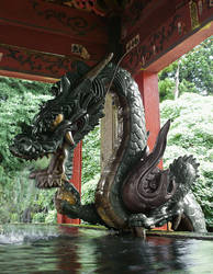 Dragon by SheltieWolf
