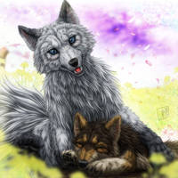Mother Wolf by SheltieWolf
