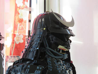 Black Samurai by SheltieWolf