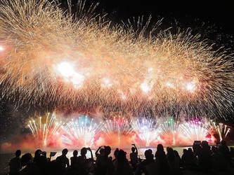 Fireworks by SheltieWolf