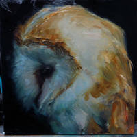 Owl by snellynell