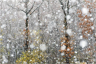 Let it snow by ClaudeG
