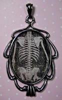 Skull Torso - creepie cameo by LunaticDolls