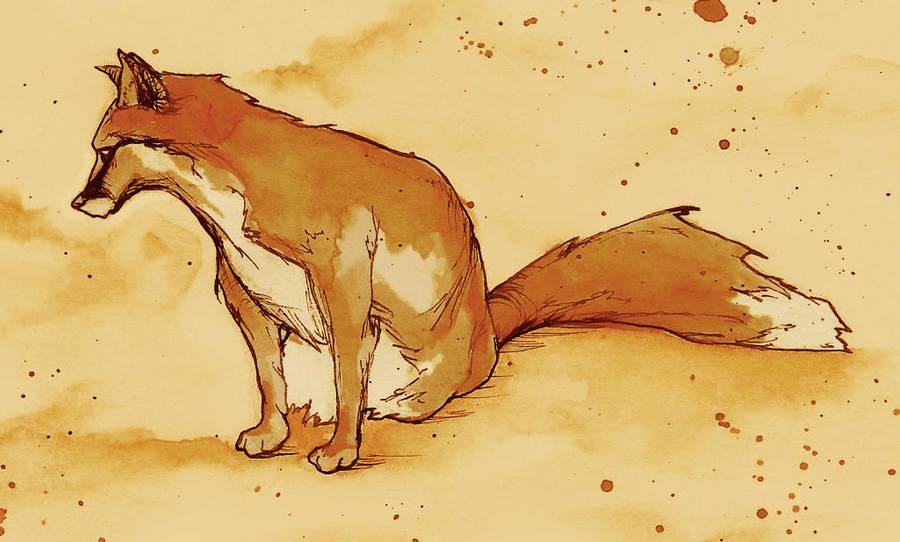 Fox by AbigailLarson