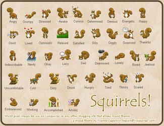 Squirrel Mood Theme Set by princess-phoenix