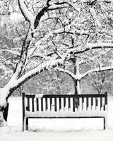 Snowy Bench 02 by StudioFovea